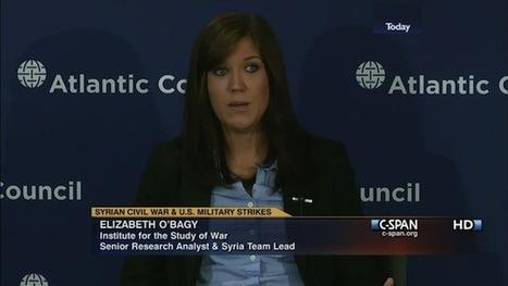 Exclusive: McCain Hires Controversial Syria Analyst Elizabeth O'Bagy | gossip-fofocas | Scoop.it