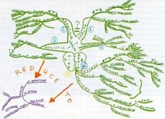 Positive Health Online | Article - The Mind Map as an Aid for Therapists | Mind mapping, pensée visuelle et thérapie | Scoop.it