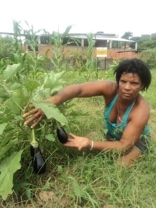 Urban Farming Takes Root in Brazil's Favelas - IPS ipsnews.net | Sustainable Thinking | Scoop.it