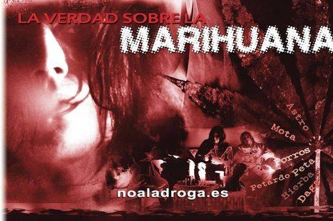 Pagina web oficial de la Fundación por un Mundo sin Drogas, la verdad sobre la marihuana y el cannabis | Drogas | Scoop.it