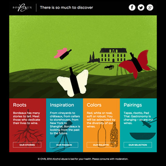 Bordeaux wines. There is so much to discover | Planet Bordeaux - The Heart & Soul of Bordeaux | Scoop.it