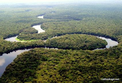 Forêt d'Afrique centrale: la RDC bénéficie de 250 millions USD | Agriculture en RDC - République Démocratique du Congo | Scoop.it