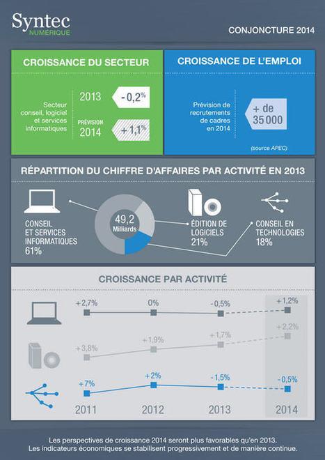 Numérique en France : le logiciel, seul rescapé de la crise en 2013 | Relation client BtoC | Scoop.it
