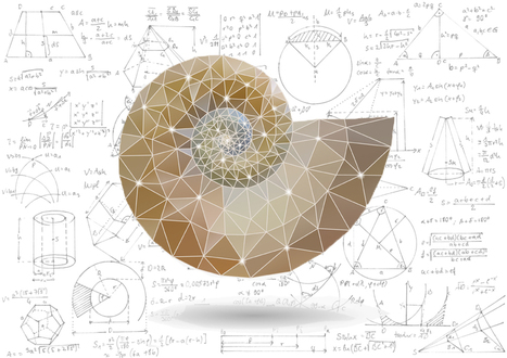 Mathematical Masterpieces: Making Art From Equations | DiscoverMagazine.com | Informatics Technology in Education | Scoop.it