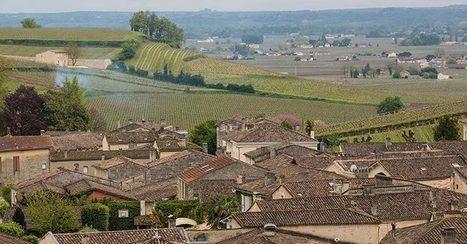 Angélus versus Saporta, retour sur un procès très Vino Business | Le vin quotidien | Scoop.it