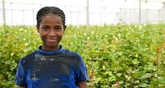 7 européens sur 10 affirment qu'aider les pays en développement est également bénéfique pour eux   Economie Responsable et Consommation Collaborative   Scoop.it