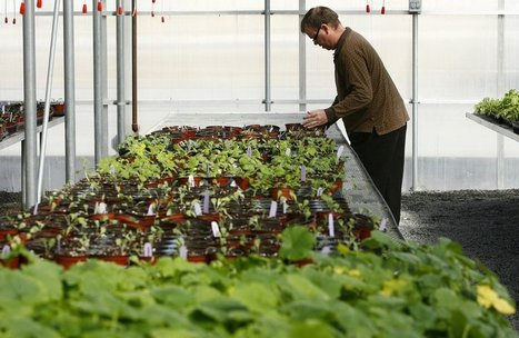 Jobs for people with autism: A New Leaf nurtures people, plants | Tulsa World | Techy Stuff | Scoop.it