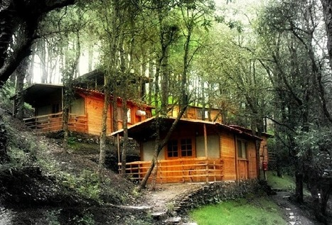 Experience the Heavenly Stay at The Cottages in Shimla | Hotels & Accommodation | Scoop.it