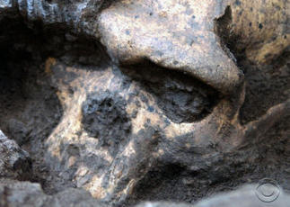 Newly found ancient skull could rewrite human history | Civilization in Ancient history | Scoop.it