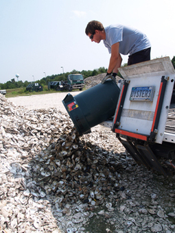 Restaurants participate in oyster shell recycling programs | Seafood Trends content from Nation's Restaurant News | On the Plate | Scoop.it