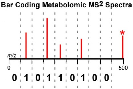 Bar Coding MS2 Spectra for Metabolite Identification - Analytical Chemistry | Natural Products Chemistry Breaking News | Scoop.it