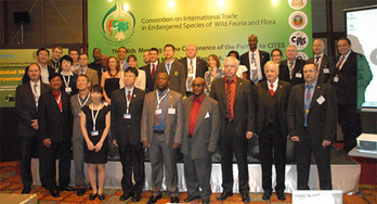 CITES: First global meeting of wildlife enforcement networks | Wildlife Trafficking: Who Does it? Allows it? | Scoop.it