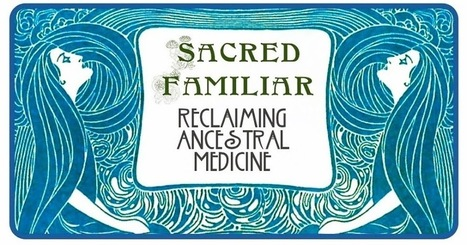 SACRED FAMILIAR - YOU ARE FREE: Ayahuasca - Ben Lee | Entheogens | Scoop.it