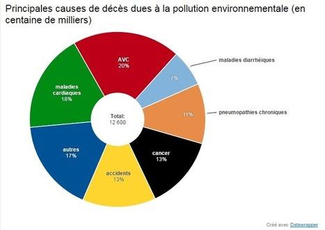 La pollution de l'environnement fait 12,6 millions de morts par an | Toxique, soyons vigilant ! | Scoop.it