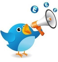Pas à pas, démarrer sa Twittclasse | Apprentissage en ligne | Scoop.it