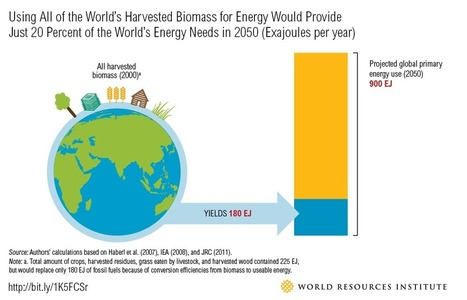 Why dedicating land to bioenergy won't curb climate change | Zero Footprint | Scoop.it