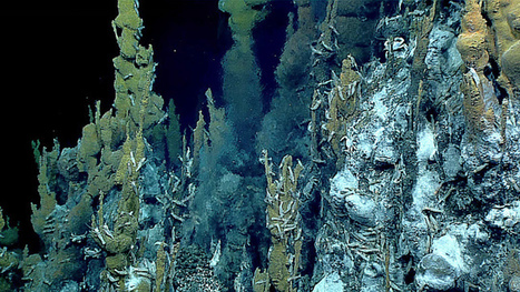 The Limits of Life Beneath Deep Sea Hydrothermal Vents - The Extremo Files | Marine Mineral Resources | Scoop.it