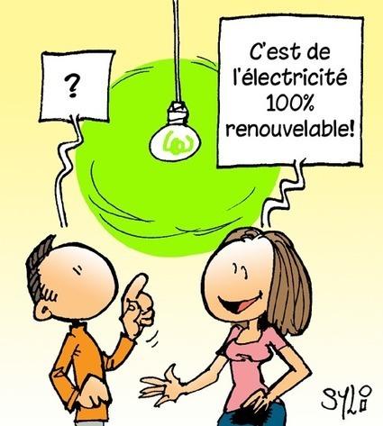 syl-arts: Electricité renouvelable   Energies Vertes en Midi-Pyrénées   Scoop.it