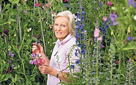 Mary Berry's recipe for gardening success - Telegraph.co.uk   Help Save Our Beautiful Bees and Wildlife.Together we can make a difference.   Scoop.it