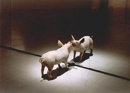 Of Other Spaces, Heterotopias | Michel Foucault | The Nomad | Scoop.it