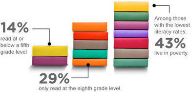 ProLiteracy - The Crisis - Adult Literacy Facts | AdLit | Scoop.it