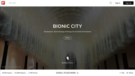 Bionic City mag, Aug 2016 | Bionic City™ | Scoop.it
