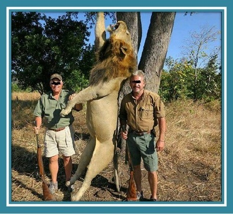 LionAid - Are trophy hunters pyschopaths? - News | Trophy Hunting: It's Impact on Wildlife and People | Scoop.it