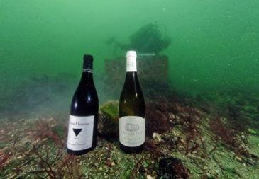 Neptune, le vin de la mer.  | agro-media.fr | agro-media.fr | actualité agroalimentaire | Scoop.it