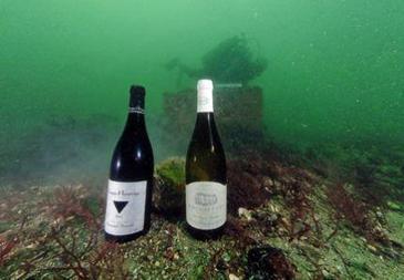 Neptune, le vin de la mer.  | agro-media.fr | Actualité de l'Industrie Agroalimentaire | agro-media.fr | Scoop.it