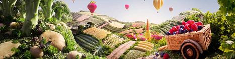 » Gallery | Créativité des sauces, design contemporain des mignonettes, marketing réussi des marques et fabrication made in France. | Scoop.it