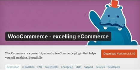 12 Ideal WordPress Plugins for your ecommerce websites | Websites - ecommerce | Scoop.it