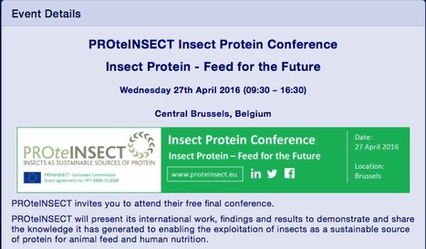 PROteINSECT Conference - Insect Protein Feed for the Future | Protein Alternatives: Insects as Mini-Livestock - #InsectMeal | Scoop.it