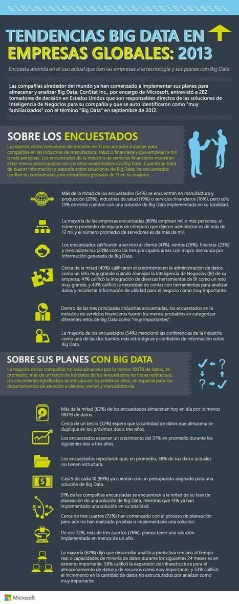Infografía: Tendencias Big Data en Empresas Globales 2013 | big data5 | Scoop.it