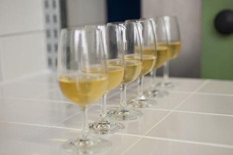 La représentation social des descripteurs en dégustation | Le Vin et + encore | Scoop.it