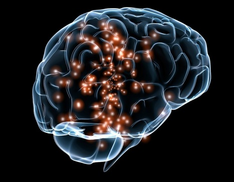 The Neurocritic: And the DARPA deep brain stimulation awards go to... | Science Is Good For Your Brain | Scoop.it