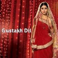 Gustakh Dil 7th August 2014 Written Update Episode | Written Episode Update | Scoop.it