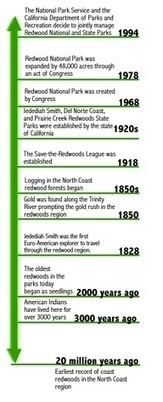 Pinterest / Search results for History timelines | LIVING HISTORY | Scoop.it