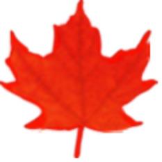(FR) (EN) (ES) - Terminología de Reproducción Asistida |TERMIUM Plus Canada | Glossarissimo! | Scoop.it