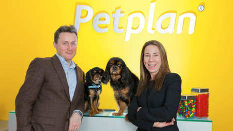 Entrepreneurs see pet project develop into a thriving venture - FT.com | Pet Business | Scoop.it