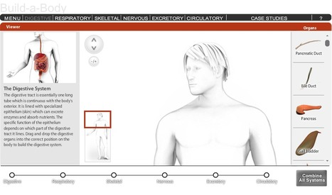 Build a Body | CLIL and ICT Resource Pool | Scoop.it