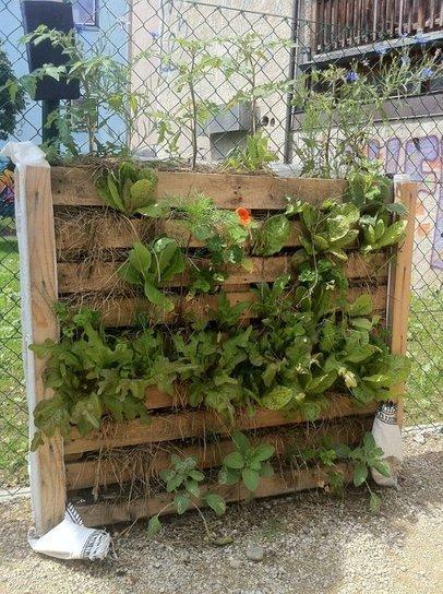Jardiniere verticale meilleures images d 39 inspiration - Palette jardiniere verticale ...