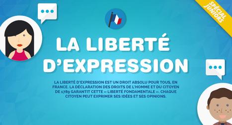 Infographie: la liberté d'expression | CDI du lycée Tabarly | Scoop.it