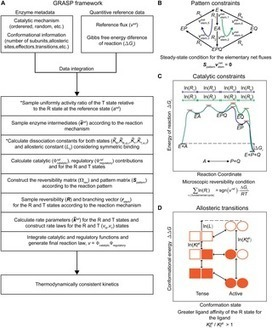 A General Framework for Thermodynamically Consistent Parameterization and Efficient Sampling of Enzymatic Reactions | Databases & Softwares | Scoop.it