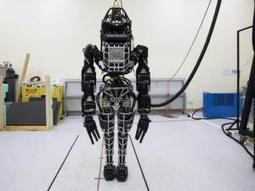 Google building a robot army? - IOL SciTech | IOL.co.za | Business Video Directory | Scoop.it