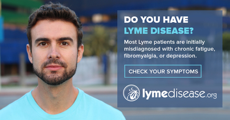 Do you have Lyme disease? Take the Lyme disease symptom checklist test. | Lyme Disease & Other Vector Borne Diseases | Scoop.it