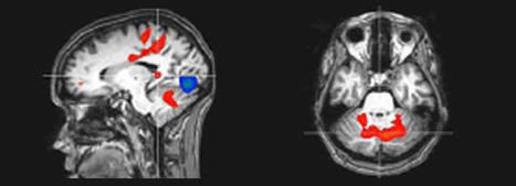 Paper Beats Digital For Emotion - Neuromarketing | With My Right Brain | Scoop.it