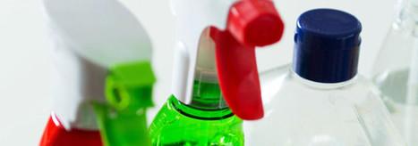 RSE des entreprises de propreté : la patte verte - Le nouvel Economiste | Santé Sécurité Hygiène Environnement PROPRETE | Scoop.it
