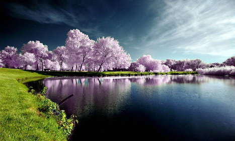 25 Breathtaking Examples of Nature Photography   Inspirational Photography to DHP   Scoop.it