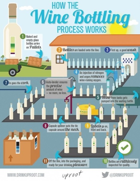 Infographic: From Barrel to Bottle. How to Bottle Wine - Uproot Wines | Wine Liquid Lisbon | Scoop.it