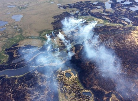 #Alaska's huge climate #mystery — and its #global consequences | Farming, Forests, Water, Fishing and Environment | Scoop.it